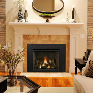Iron Strike Madison Park Gas Fireplace Insert