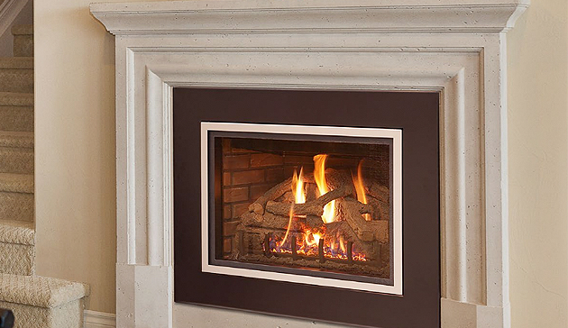 Real Fyre DVI Gas Fireplace Insert